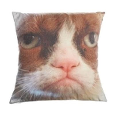 Click to get 16 Grumpy Cat Pillow